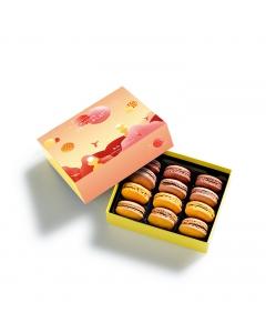 Coffret Macarons Planète Chocolat 12 pièces