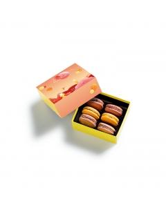 Coffret Macarons Planète Chocolat 6 pièces