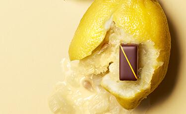 FINESSE ET VOLUPTE POUR DES CHOCOLATS EXCEPTIONNELS