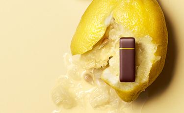 Chocolat Ganache Citron - La Maison du Chocolat