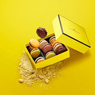 Friandise chocolat praliné - La Maison du Chocolat